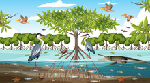 Mangrove Forest Landscape Scene At Daytime With Many Different Animals