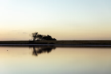 Silhouette Of Trees At Dusk With Reflection In Water