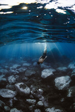 Faceless Sportsman Swimming Under Sea Water With Stones On Bottom