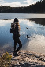 Woman Standing On Shore Near Swimming Ducks