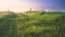 Polna Droga O Wschodzie Słońca. Romantyczny Wschód Słońca.