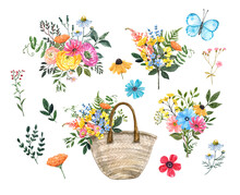 Watercolor Hand Painted Wild Flowers, Floral Bouquets, Isolated On White Background. Summer Colorful Flowers And Herbs.