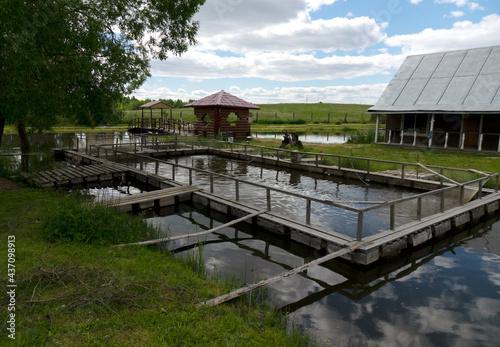 Fotografia Fishing farm for carp breeding.