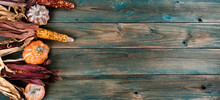 Aging Pumpkins And Corn On Faded Blue Wood Planks For Either A Halloween Or Thanksgiving Holiday Background