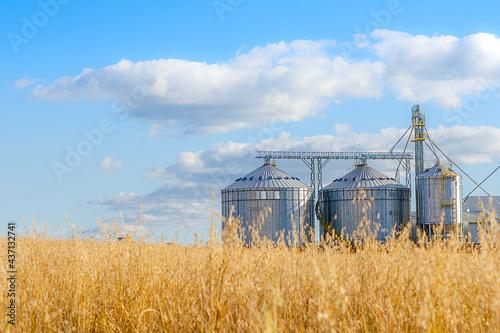 Foto grain storage silos