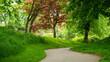 Leinwandbild Motiv Park in Spring