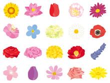 様々な花のイラスト