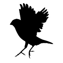 Finch Bird Silhouette