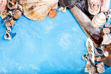 Framed Seashells Background Over Turquoise