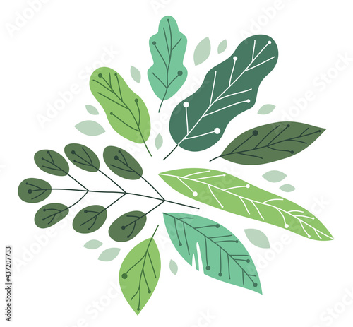 Tela Beautiful fresh green leaves flat style vector illustration isolated on white, floral composition drawing, botanical design