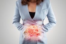 Illustration Of Large Intestine Is On The Woman's Body. Business Woman Touching Belly Painful Suffering From Enteritis. Internal Organs Of The Human Body. Inflammatory Bowel Disease