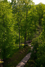 Aerial View Of A Hiking Trail With A Paved Path Under Green Trees And Blue Skies.