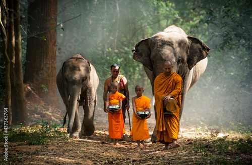 Tela Thai monks walking in the jungle with elephants