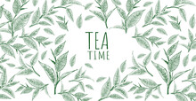 Vector Background With Green Tea. Hand Drawn.