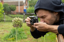 Man Is Taking Photo Of Blooming Garlic. Exploring Of Microcosm Into Flowers Via Lens Camera. Young Man Wearing Hoodie Uses Retro Camera For Taking Pictures Of Nature. Macro Photography Portrait.