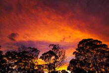 A Beautiful Evening Sky In Sydney, Australia