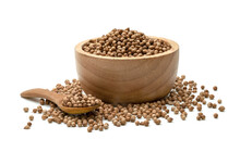 Dried Coriander Seeds In Wooden Spoon And Bowl Isolated On White Background