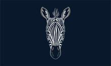 Zebra On Black Background