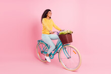 Portrait Of Attractive Cheerful Girl Riding Bike Spending Free Time Isolated Over Pastel Pink Color Background
