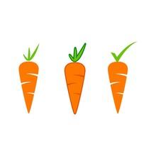 Carrot Vector Icon Design Illustration