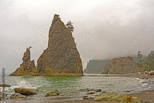 Coastal Seascape on a Foggy Day #437464313