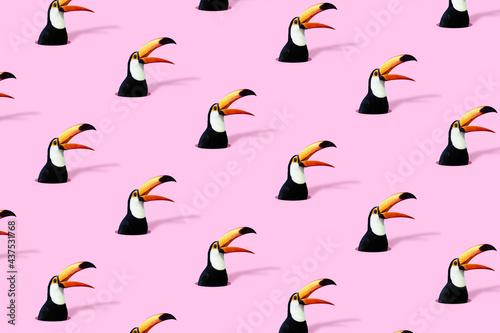 Fotografiet Jungle paradise toucan making an announcement out loud
