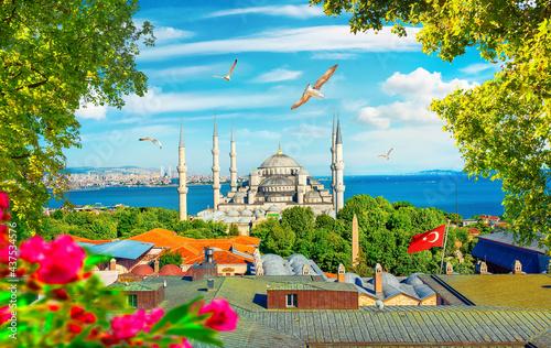 Obraz na płótnie Blue Mosque and flowers