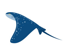 Marine Vector Illustration Of A Stingray Isolated On A White Background