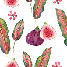 Seamless Tropical Pattern With Green Leaves Around The Edges With Red Burgundy Border, Pink Green Leaves, Fig Halves And Dragon Fruit For Design And Decoration. Great For Cleaning Paper, Textiles