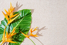 Exotic Tropical Orange Flower Bird Of Paradise And Large Green Leaf On Sand Background, Copy Space, Top View
