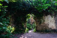 Casa Abandonada En Ruinas, Camuflada En El Bosque