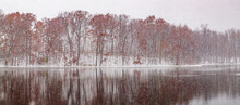 Winter Forest River Reflection Panorama
