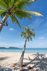 Summer beach with palms trees around in Patong beach Phuket island Thailand, Beautiful tropical beach with blue sky background in summer season.