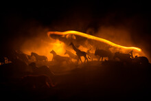 A Group Of Animals Are Grouped Together On A Black Background With Glowing White Rays. Animals Range From An Elephant, Zebra, Bear And Rhino. Use It For A Zoo Or Friends Concept.
