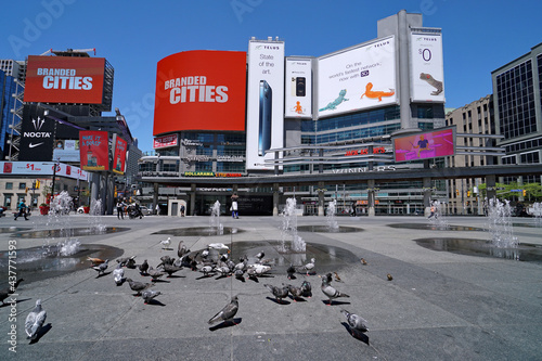 Fototapeta premium Large flocks of pigeons enjoy the fountains emerging from the pavement at Yonge-Dundas Square, at the heart of downtown Toronto's shopping district.