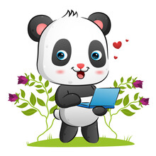 The Cute Panda Is Holding A Laptop To Present Something In The Garden