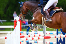 Horse Brown Jumping Horse In Close-up With Rider Over The Jump At A Show Jumping Tournament, Photographed Diagonally From Behind, Landscape Format..