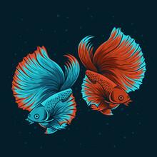 Illustration Two Beautiful Beta Fish