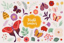 Floral Set - Butterflies, Poppy, Flower, Peony, Leaves, Berry, Moth