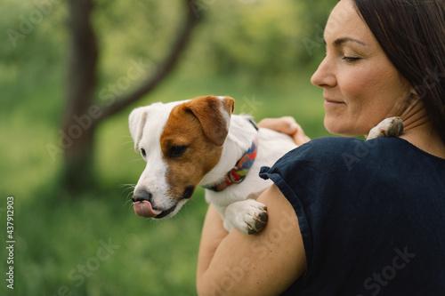 Fotografie, Obraz Woman play Jack Russell Terrier dog in meadow