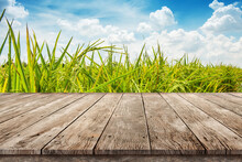 Wooden Table Top Montage Photo With Paddy Rice Plantation Against Blue Sky With Soft Clouds , Product Display Background Concept