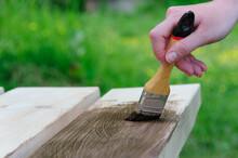 Girl Paints A Garden Bench With Dark Varnish