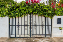 Vine Covered Wrought Iron Gates On The Exterior Of A House.