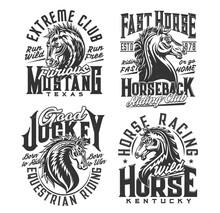 Horse Riding Club, Equestrian Sport T-shirt Prints. Stallion, Wild Mustang Mascot Vector. Horseback Riding Club, Horse Racing Jockey Custom Design Apparel With Racehorse Head And Vintage Typography