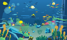 Underwater Illustration With Various Animals, Marine Plants, And Coral Reefs