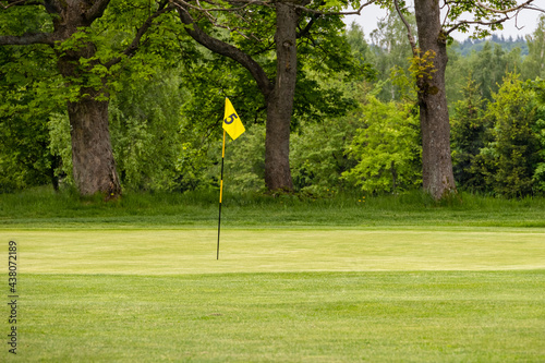 Golf green with flag in spring nature #438072189