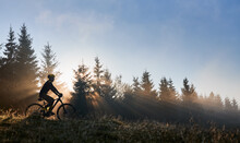 Silhouette Of Young Man In Cycling Suit Riding Bicycle In Forest Illuminated By Morning Sunlight. Male Bicyclist Cycling Down Grassy Hill In The Morning. Concept Of Sport And Bicycling.