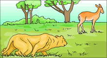 Illustration Of A Lion Hunting A Deer In Forest