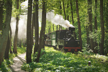 An Old Green Train And Black Steam Locomotive In A Deciduous Forest (public Park). Latvia. Narrow-gauge Railway, National Landmarks, Retro Transport, History, Past, Historical Reenactment, Recreation