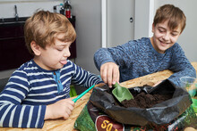 Boy With Gardening Trowel And Soil Against Brother At Home